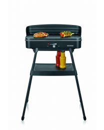 PG 8533 Standgrill